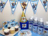 Skylander Birthday Party Decorations Skylands and Beyond Skylanders Party Pinterest Inspired