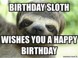 Sloth Happy Birthday Meme Birthday Sloth