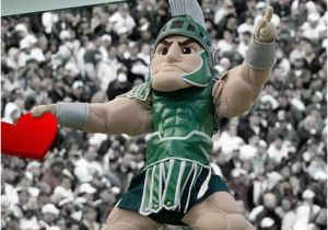 Spartan Birthday Meme 17 Best Images About Michigan State Spartans On Pinterest