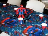 Spiderman Birthday Party Decorating Ideas Mermaid and Spiderman Birthday Party Chai Mommas