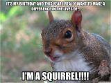 Squirrel Happy Birthday Meme Squirrel