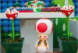 Super Mario Bros Birthday Decorations Kara 39 S Party Ideas Brazilian Super Mario Boy Gaming