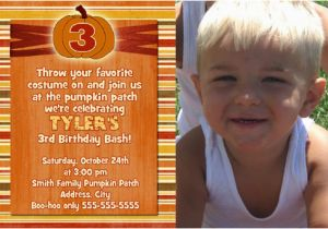 Third Birthday Invitation Wording Third Birthday Party Invitation Wording Ideas New Party