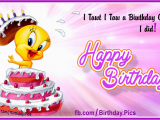 Tweety Birthday Card Her Tweety Birthday Cake Happy Birthday to You Happy