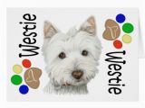 Westie Birthday Cards Cute Westie Dog and Paws Art Gifts Greeting Card Zazzle