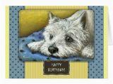 Westie Birthday Cards Westie Birthday Card Zazzle