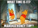 Winnie the Pooh Happy Birthday Meme What Time is It Manuka Honey Time Meme Winnie 80051