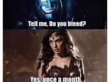 Wonder Woman Birthday Meme 25 Best Memes About Tell Me Do You Bleed Tell Me Do You