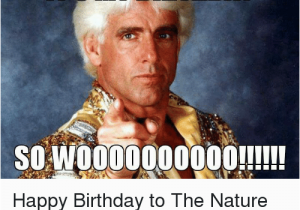 484 best images about Happy Birthday Quotes on Pinterest |Happy Birthday Wrestling Memes
