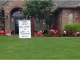 Yard Decorations for 40th Birthday Flamingos Smiles for All Occasions