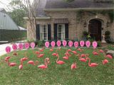 Yard Decorations for Birthdays Tax Day Sale Flamingos 2 Go