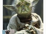 Yoda Happy Birthday Quotes Yoda Quotes Funny Happy Birthday Quotesgram